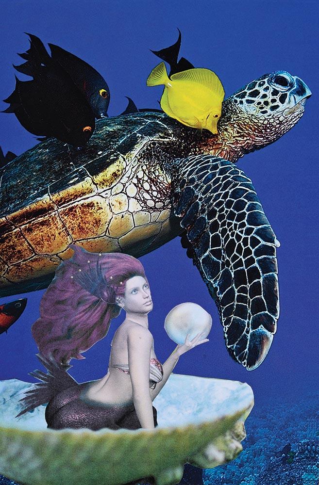 Mermaid Half Shell Home